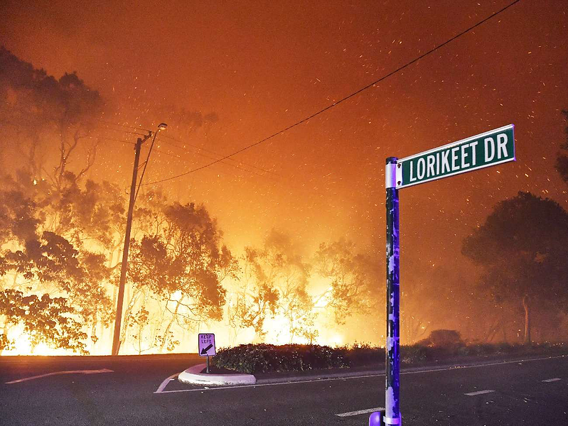 Sustainability Bushfire